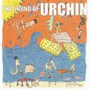 The Sound Of Urchin thumbnail