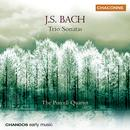 Bach, J.S.: Trio Sonatas, Bwv 525-530 thumbnail