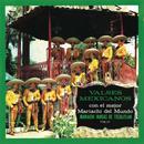 Valses Mexicanos Con El Mejor Mariachi Del Mundo Vol. II thumbnail