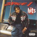 Best Of Spice 1 thumbnail
