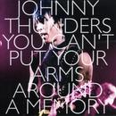 You Can't Put Your Arms Around A Memory thumbnail