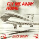 Fly Me Away Home thumbnail