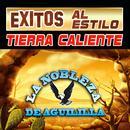 Exitos Al Estilo Tierra Cliente thumbnail