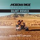 Running Wild (DLMT Remix) (Single) thumbnail