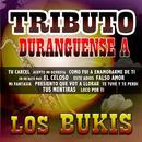 Tributo Duranguense thumbnail