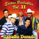 Exitos Bailables Vol. II thumbnail