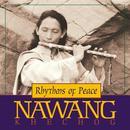 Rhythms of Peace thumbnail