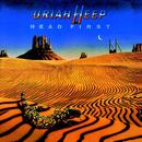 Head First (Bonus Track Edition) thumbnail