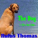 The Dog thumbnail