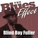The Blues Effect - Blind Boy Fuller thumbnail