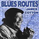 Blues Routes James Cotton thumbnail