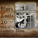 Blues Roots: 20 Songs By The Kings Of Country Blues thumbnail
