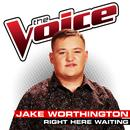 Right Here Waiting (The Voice Performance) (Single) thumbnail