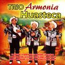 Trio Armonia Huasteca thumbnail