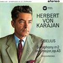 Sibelius: Symphony No. 2 thumbnail