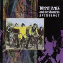 Tommy James & The Shondells: Anthology thumbnail