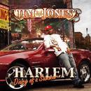 Harlem: Diary Of A Summer thumbnail