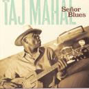 Senor Blues thumbnail