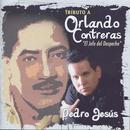 Tributo A Orlando Contreras: El Jefe Del Despecho thumbnail
