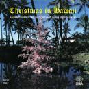 Christmas In Hawaii thumbnail