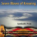 Seven Waves Of Knowing thumbnail