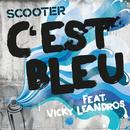 C'est Bleu (Single) thumbnail