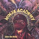 Enter The Ninja thumbnail