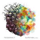 Survival (Errai) thumbnail