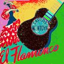 El Flamenco thumbnail