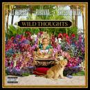 Wild Thoughts (Single) (Explicit) thumbnail