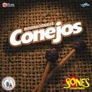 Sones Chapines. Música De Guatemala Para Los Latinos thumbnail