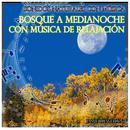Sonidos Naturales Con Música: Bosque a Medianoche Con Música de Relajación thumbnail