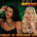 Forgot To Remember You (Single) thumbnail