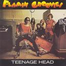 Teenage Head thumbnail
