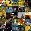 Sun Flower Jazz thumbnail