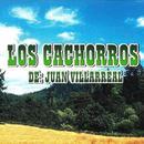 Los Cachorros De Juan Villarreal thumbnail