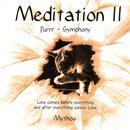 Meditation II thumbnail