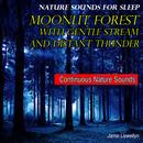 Nature Sounds for Sleep: Moonlit Forest with Gentle Stream and Distant Thunder thumbnail
