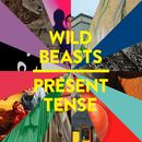 Present Tense (Special Edition) thumbnail