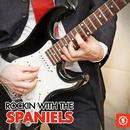 Rockin' With The Spaniels thumbnail