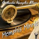 Authentic Memphis Blues thumbnail
