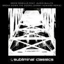 Break Down The Doors (Danny Howard Remix) (Single) thumbnail