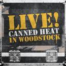 Live! In Woodstock thumbnail