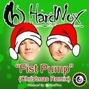 Fist Pump (Christmas Remix) (Single) thumbnail