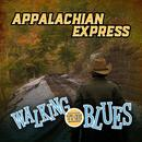 Walking The Blues thumbnail