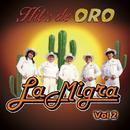 Hit's De Oro, Vol. 2 thumbnail