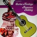 Flamenco Holiday thumbnail