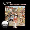 Blind Dog At St.Dunstans thumbnail