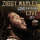 Love Is My Religion Live thumbnail