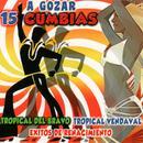 A Gozar 15 Cumbias thumbnail
